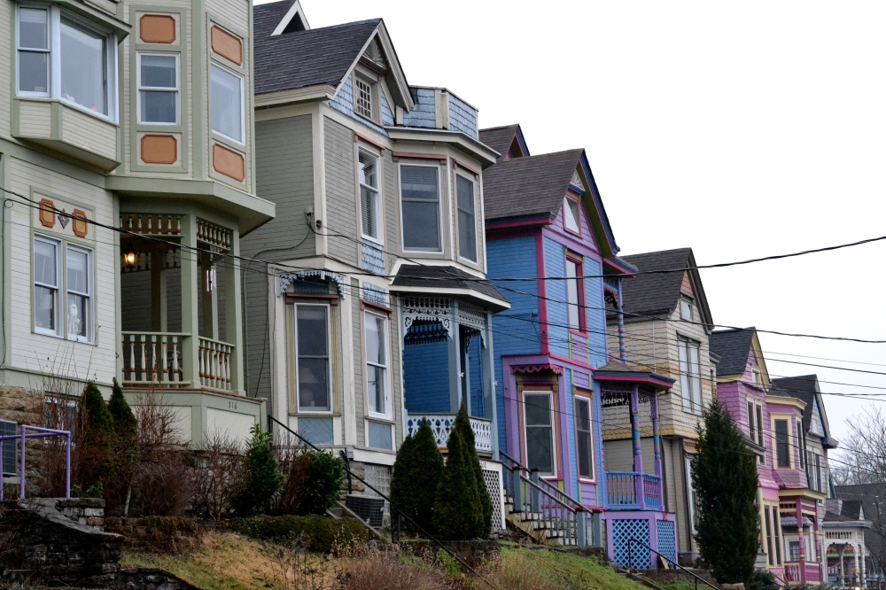 painted-ladies2